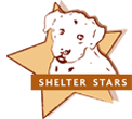 shelterstars.png