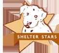 shelterstars.png