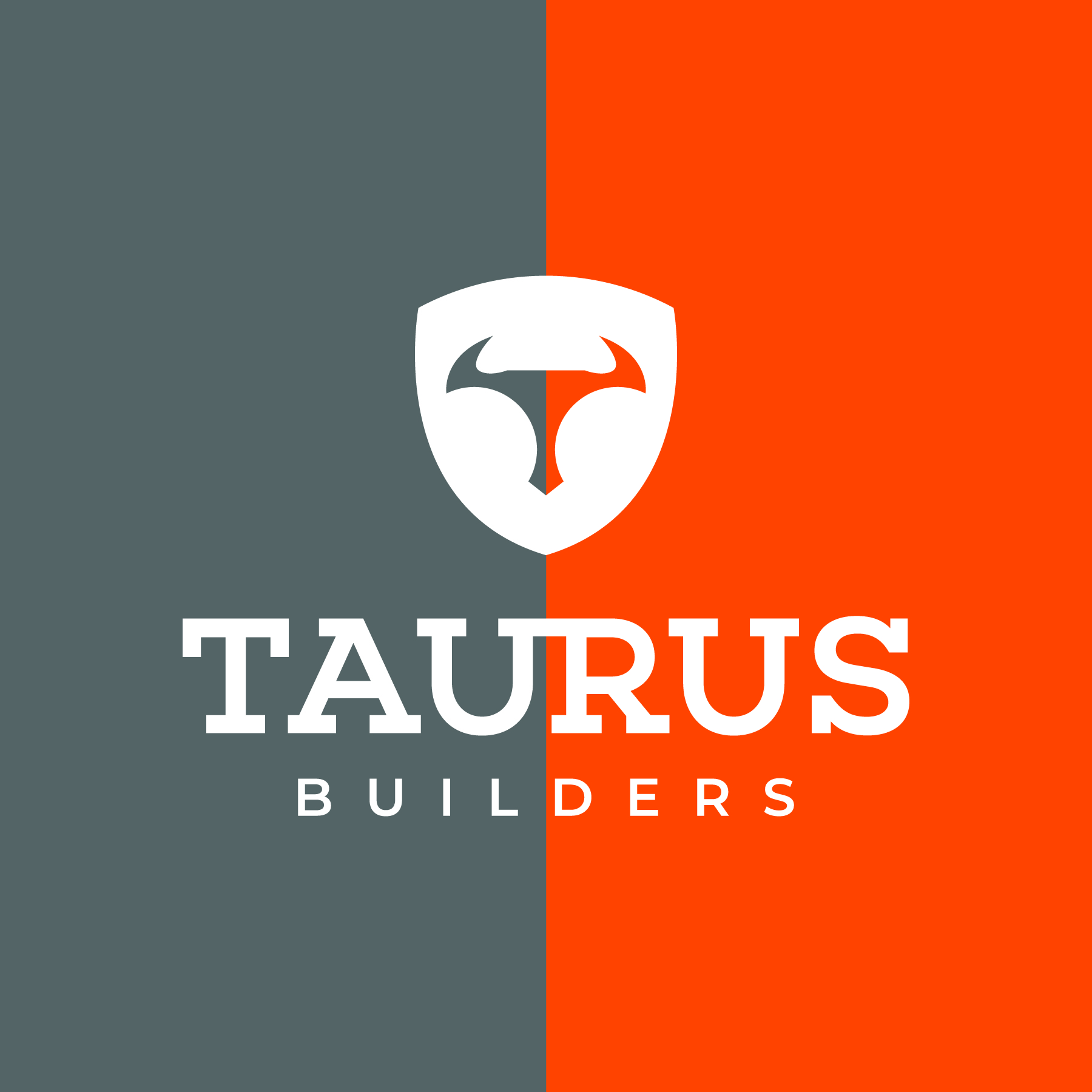taurus-01.jpg