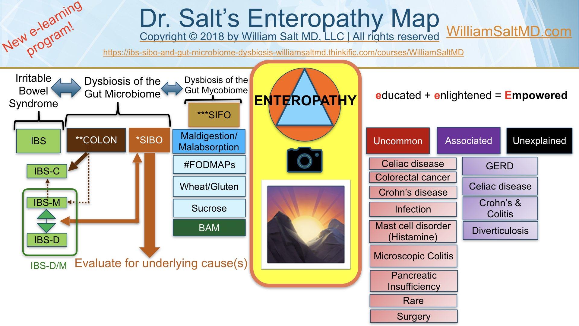 DrSalt Enteropathy Map.jpeg