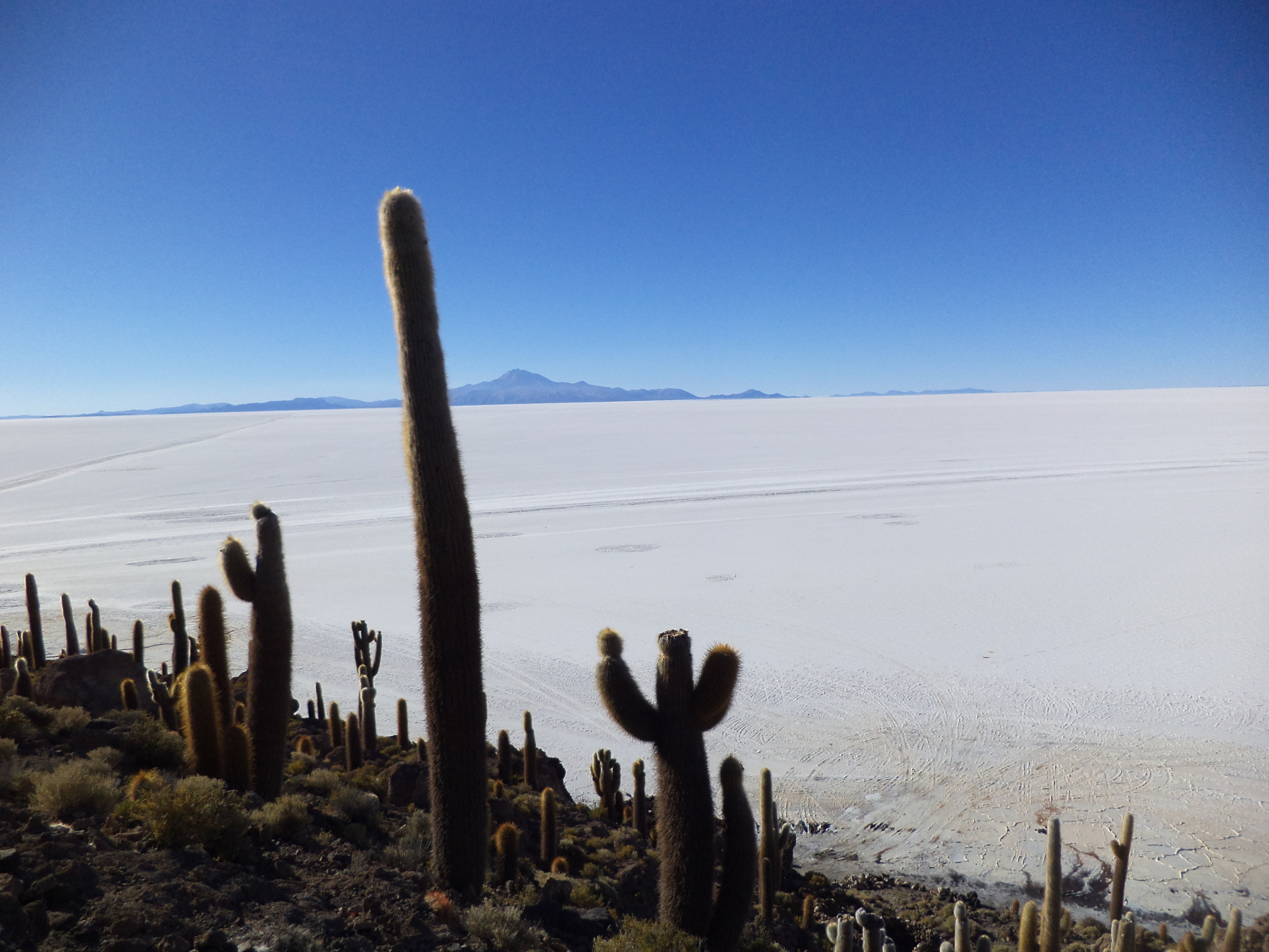 Salar de Uyuni - Bolivia  The world's largest salt flat, 4,100 square miles and elevated at nearly 12,000 feet in Bolivia's south-west corner. This is an awe-inspiring surreal landscape a place not to be missed. The sunset so vivid, and the seemingly countless stars in the sky at night and the clarity the greatest I have ever witnessed.