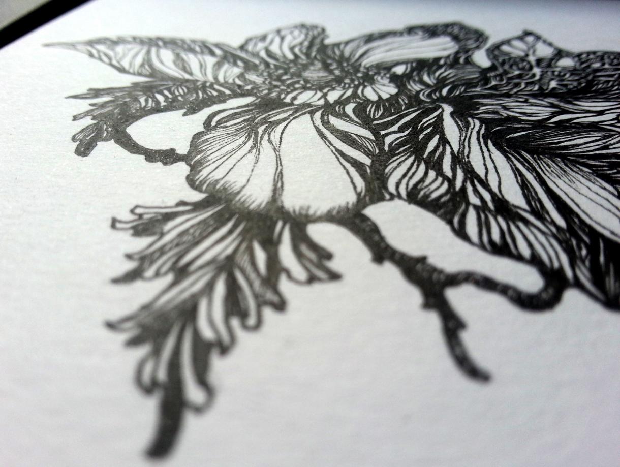 flowers_web2.jpg