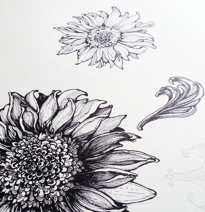 Sunflower-graphic.jpg