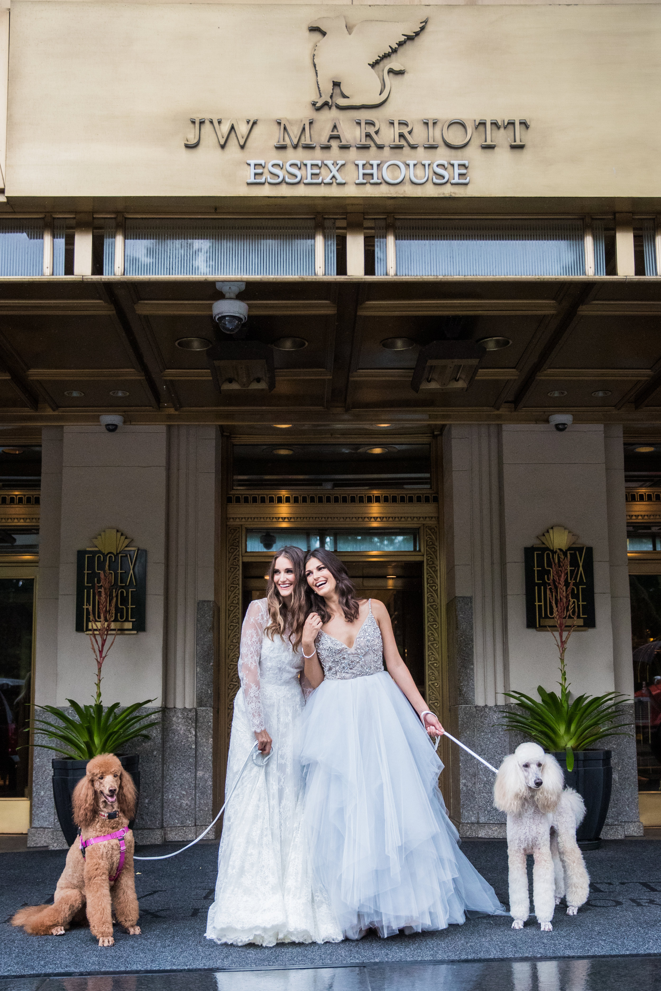 brides wedding dresses and dogs photography 0033