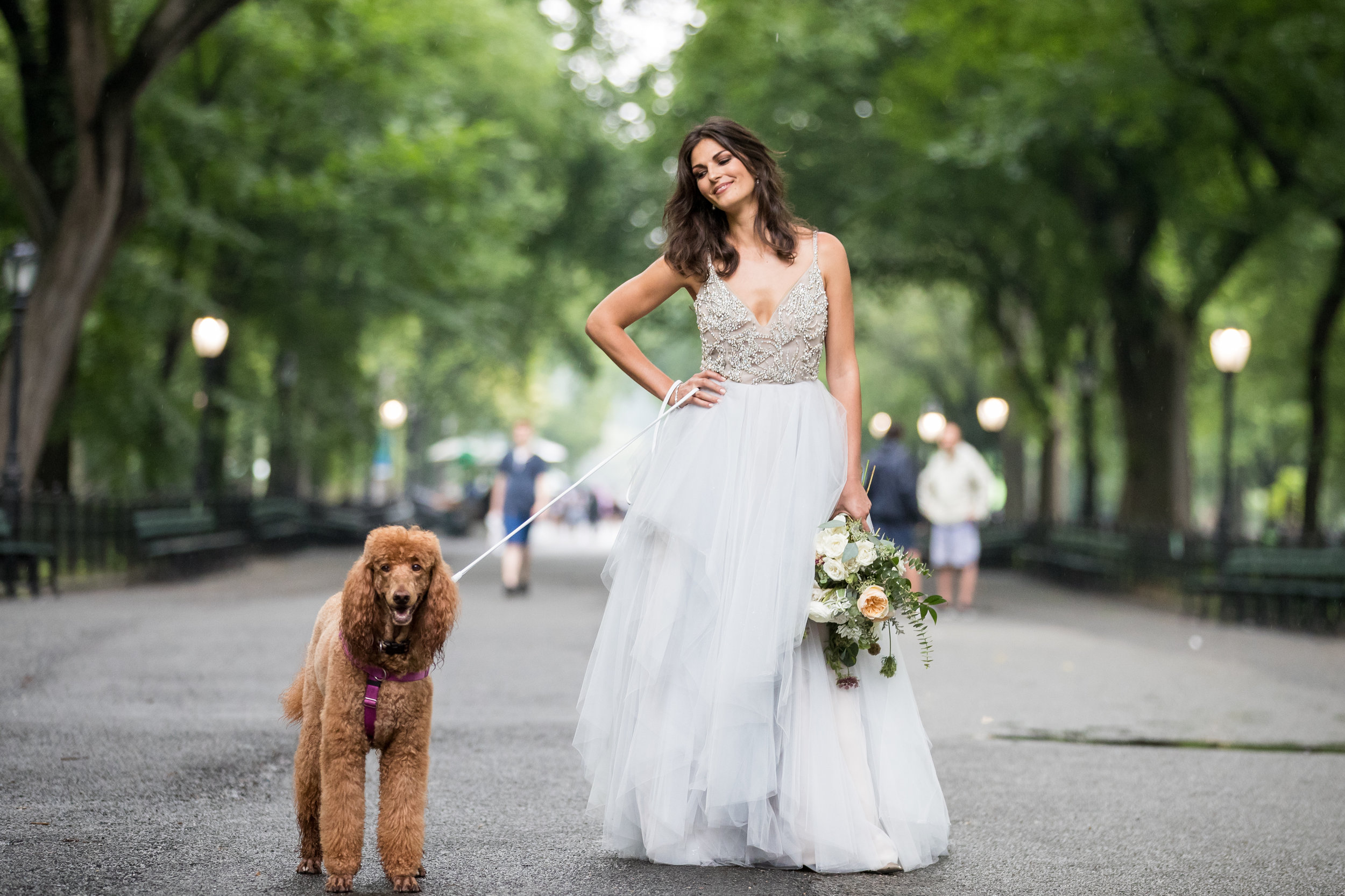 bride and dogs at park photography 0049