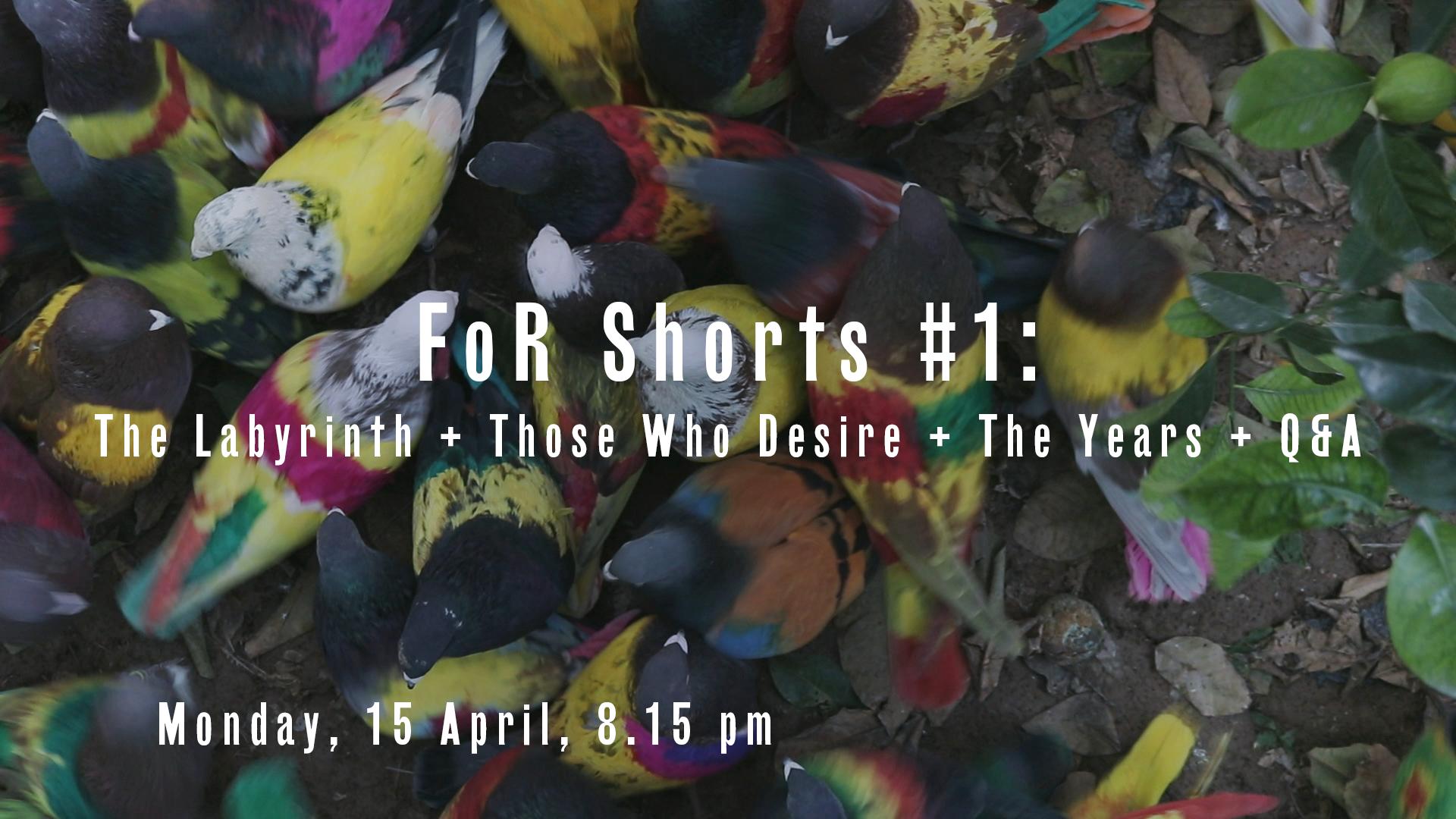 Shorts #1.png