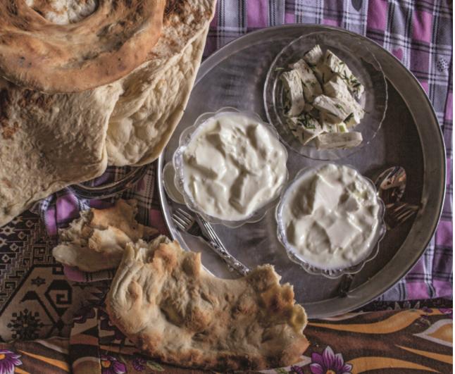 Yogurt: A Staple on the Turkish Dinner Table    TASTE