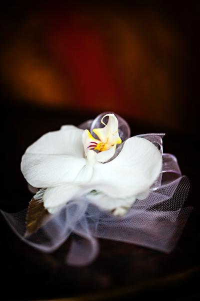 017Andrea & Dwayne San Francisco Weddinged.jpg