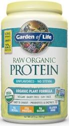 Garden of Life Plant Based Protein Powder