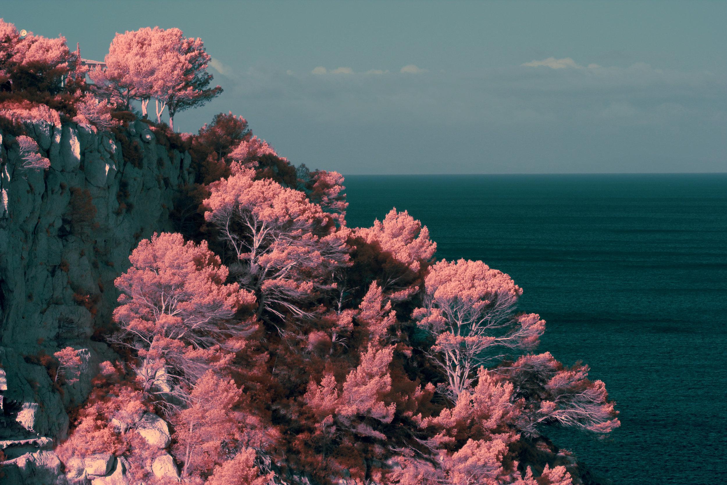 Menorca_04_orange.jpg