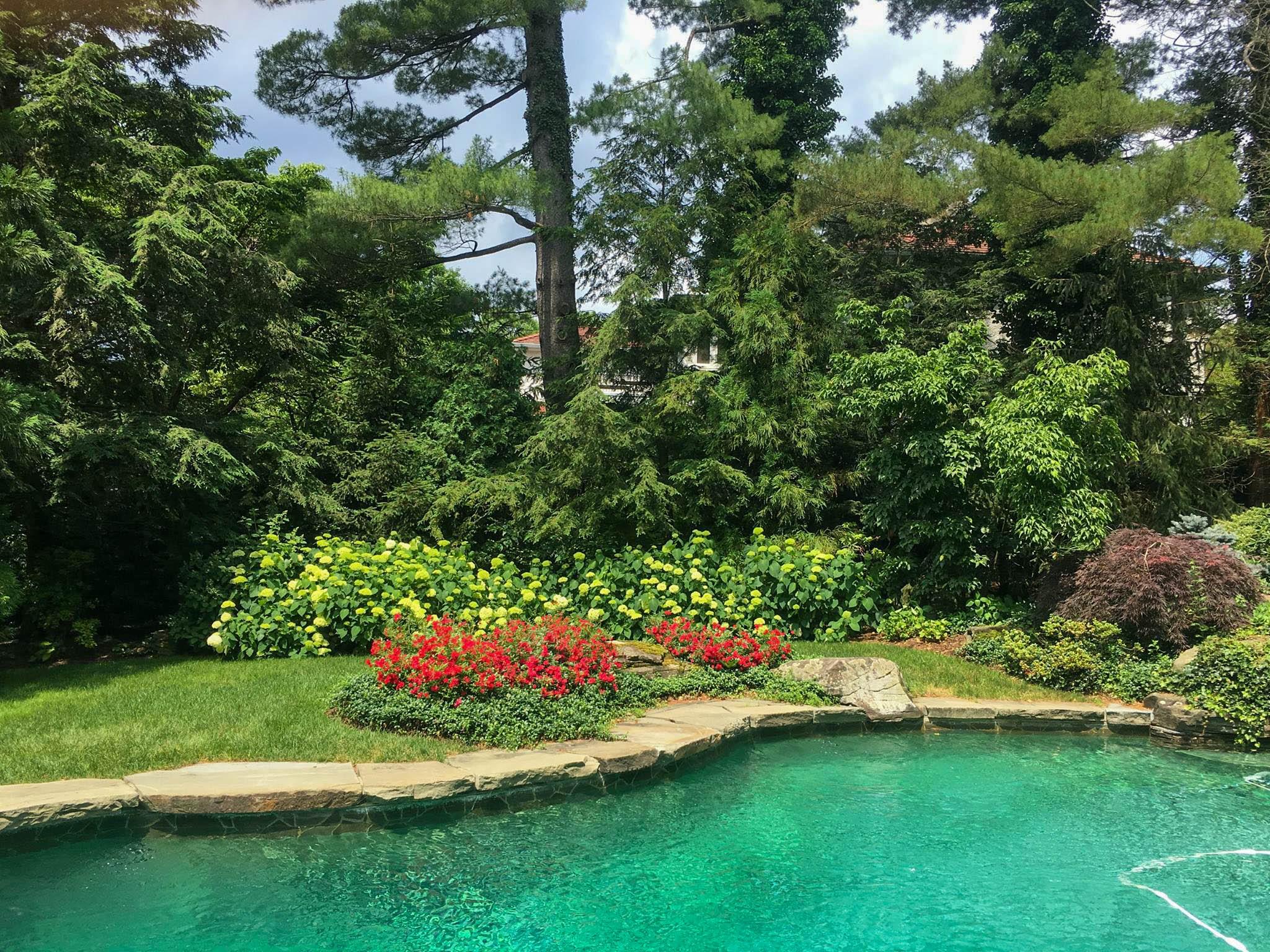 pool-garden-2.jpg