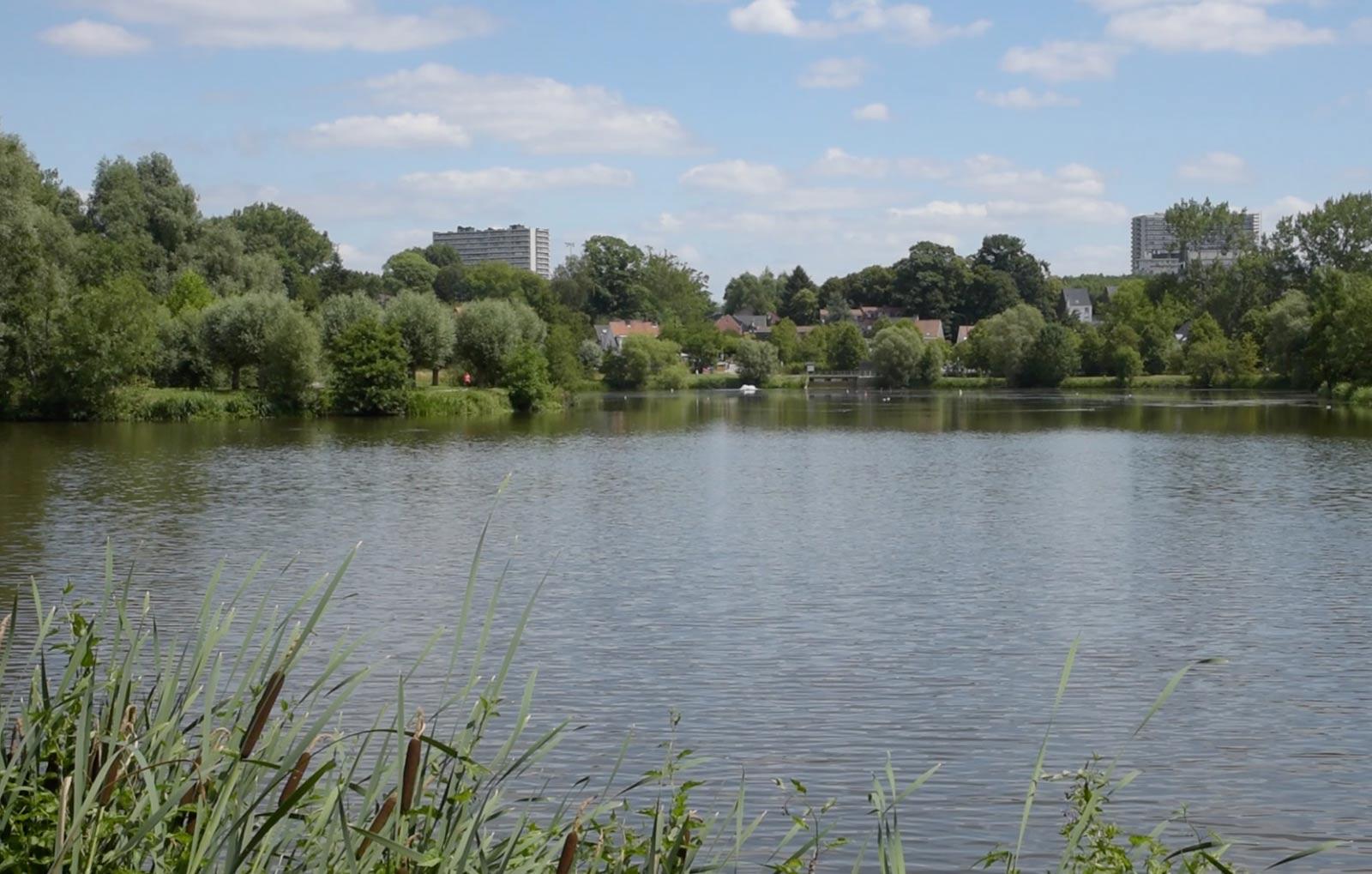 The Neerpede lake / Het Neerpede-meer / Le lac Neerpede.