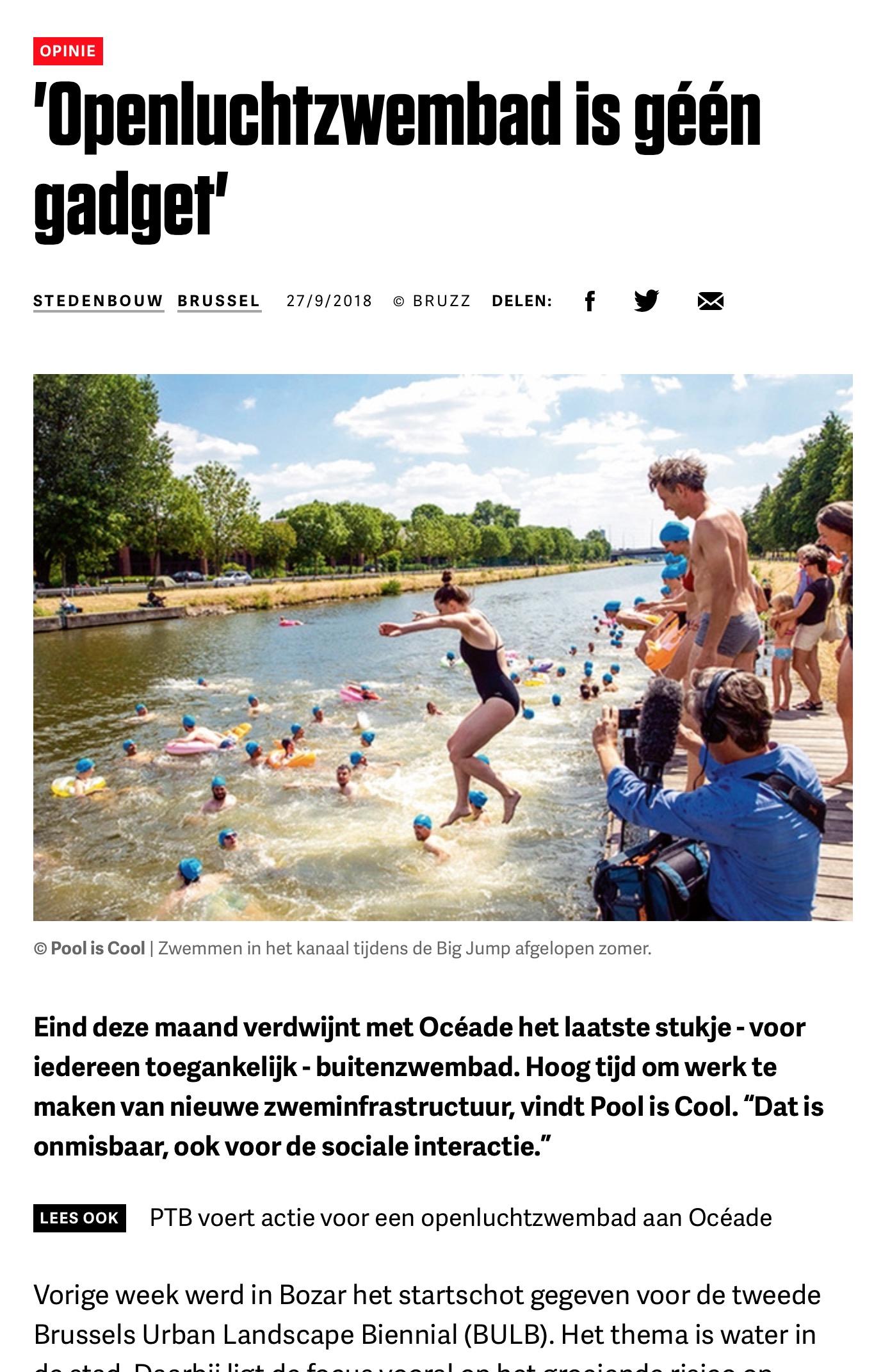 Klik hier voor het artikel in het Nederlands op BRUZZ.be …