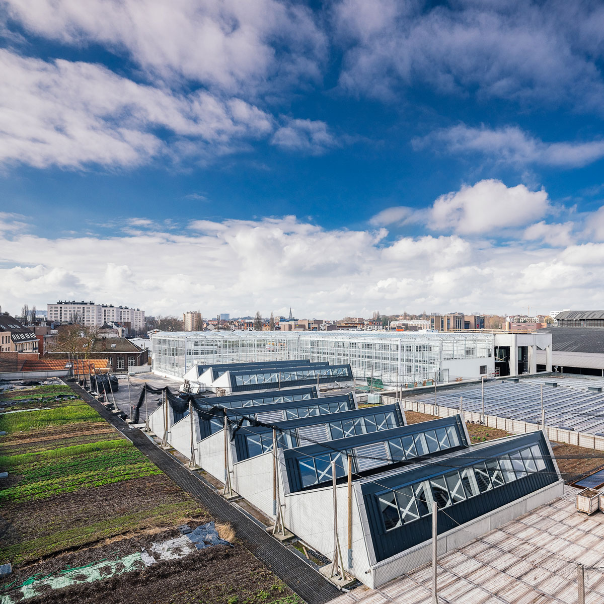 The  BIGH , garden, greenhouses and fish farm on the roof of FOODMET at the Abattoir. © BIGH