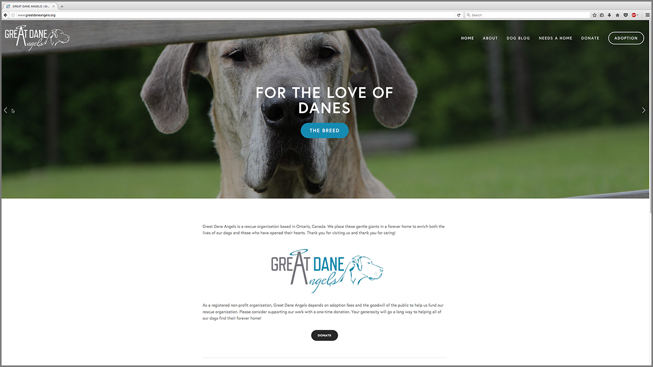 Great Dane Angels (Canine Rescue)