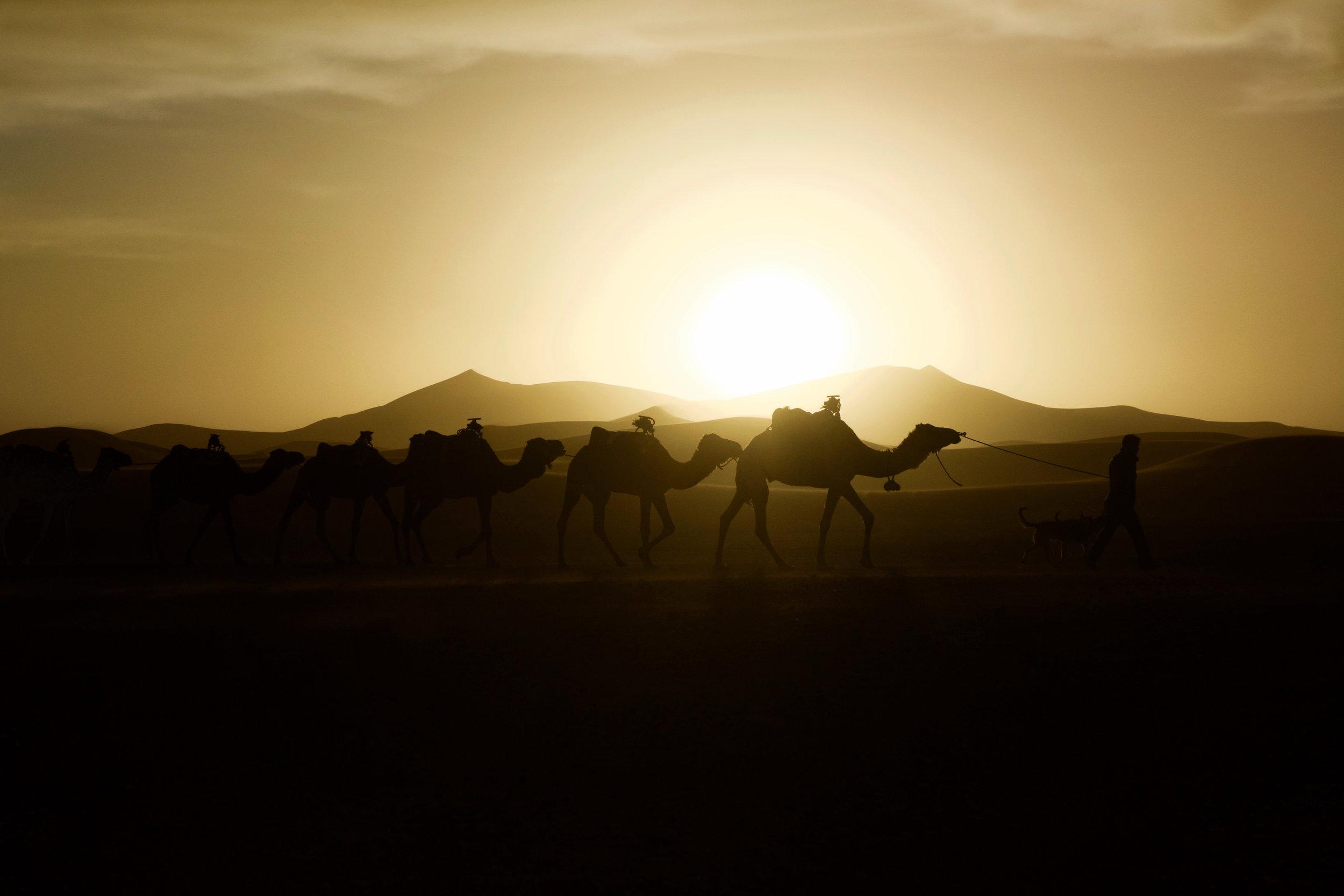 Erg Chebbi, Sahara 2018