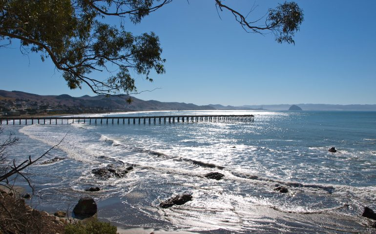 https://www.pierfishing.com/cayucos-pier/