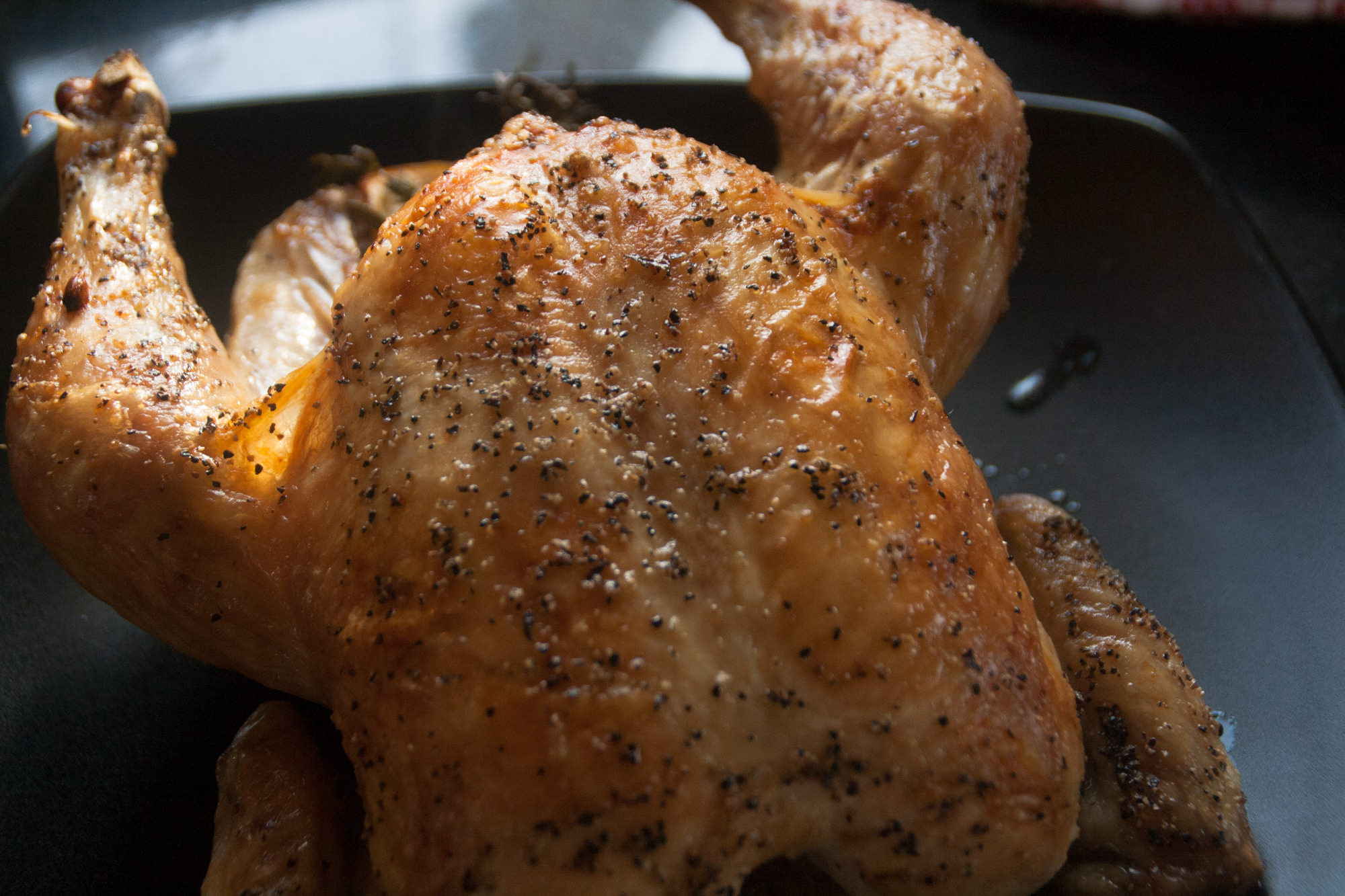roasted chicken with pan sauce recipe-8.jpg