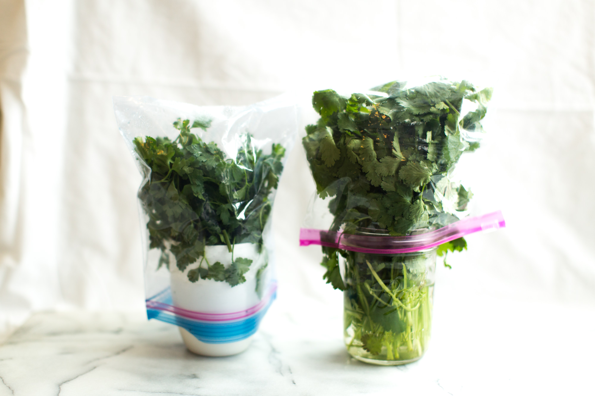 Keep Herbs Fresh With These Tips