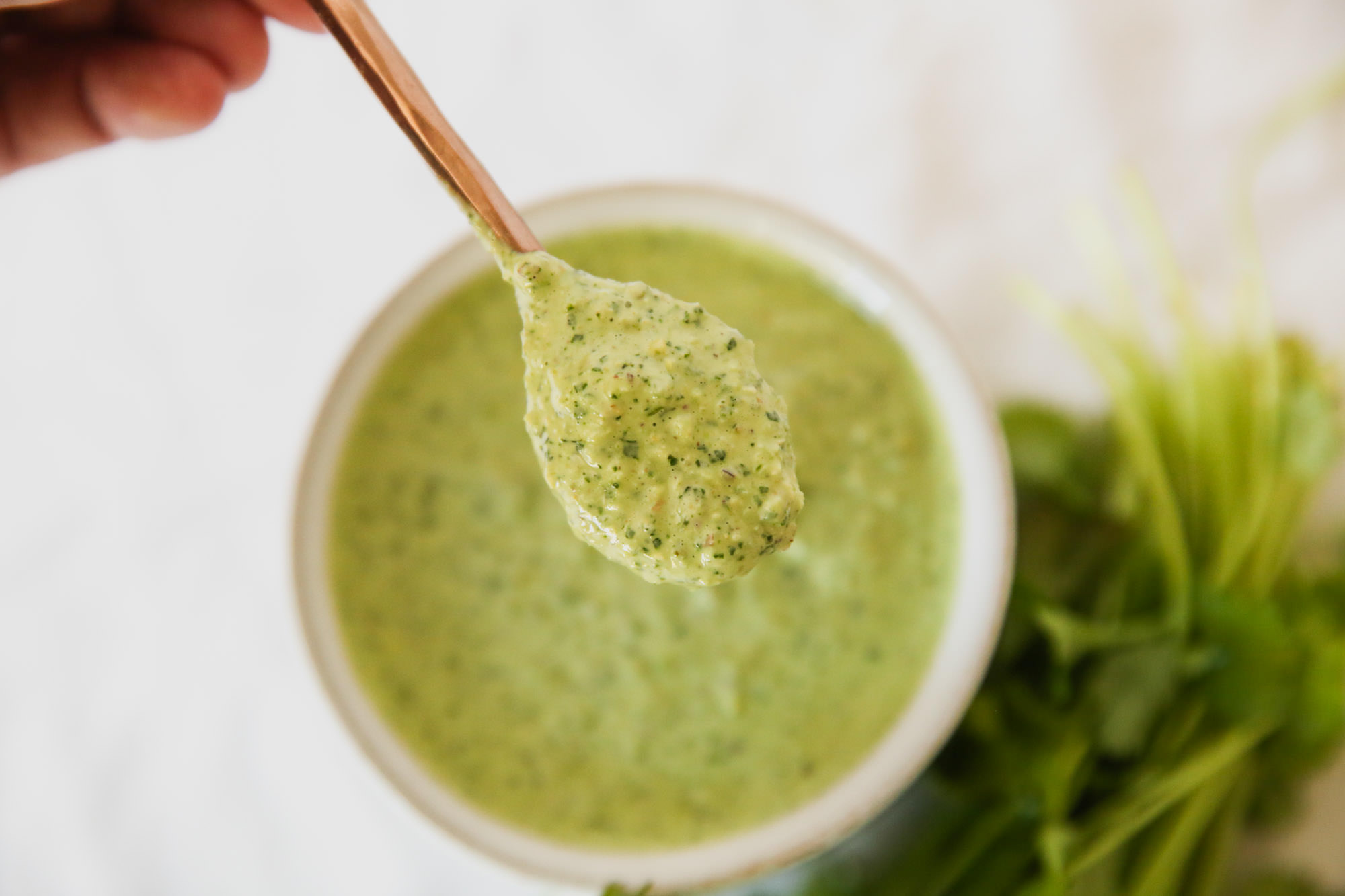 Spoonful of green salad dressing
