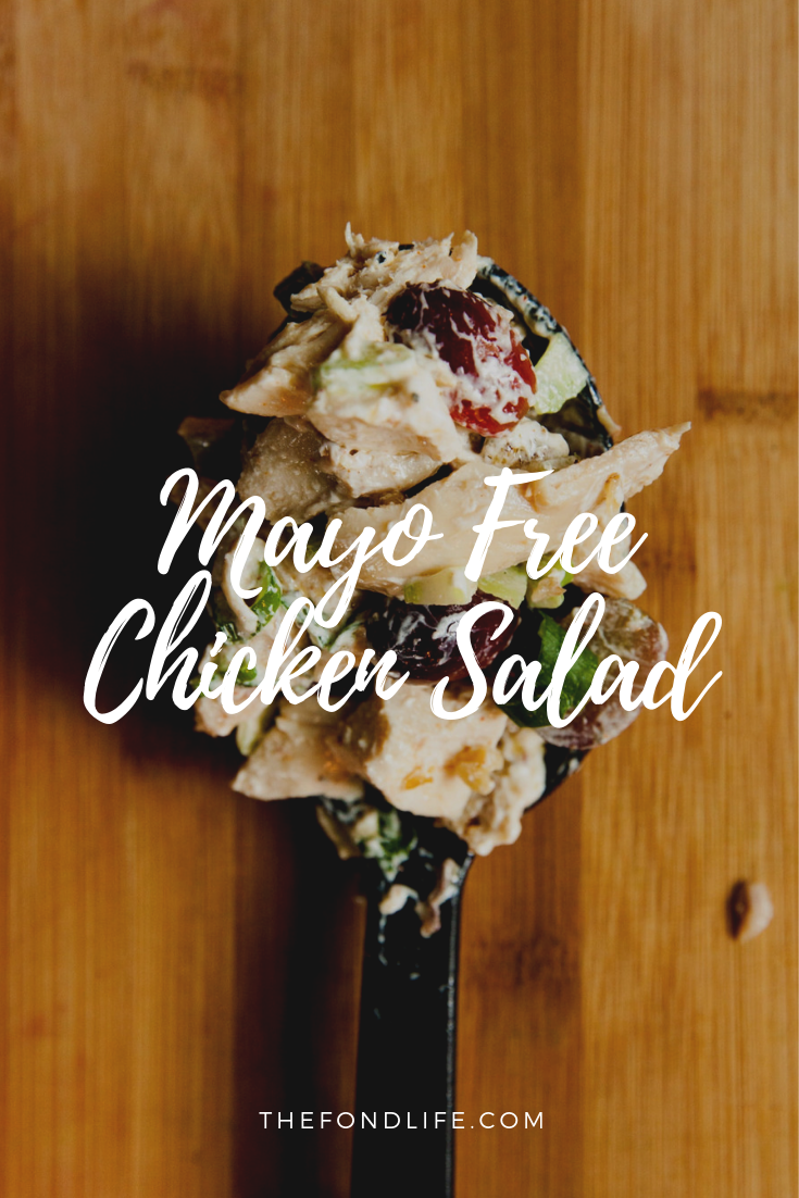 Mayo Free Chicken Salad Recipe From The Fond Life