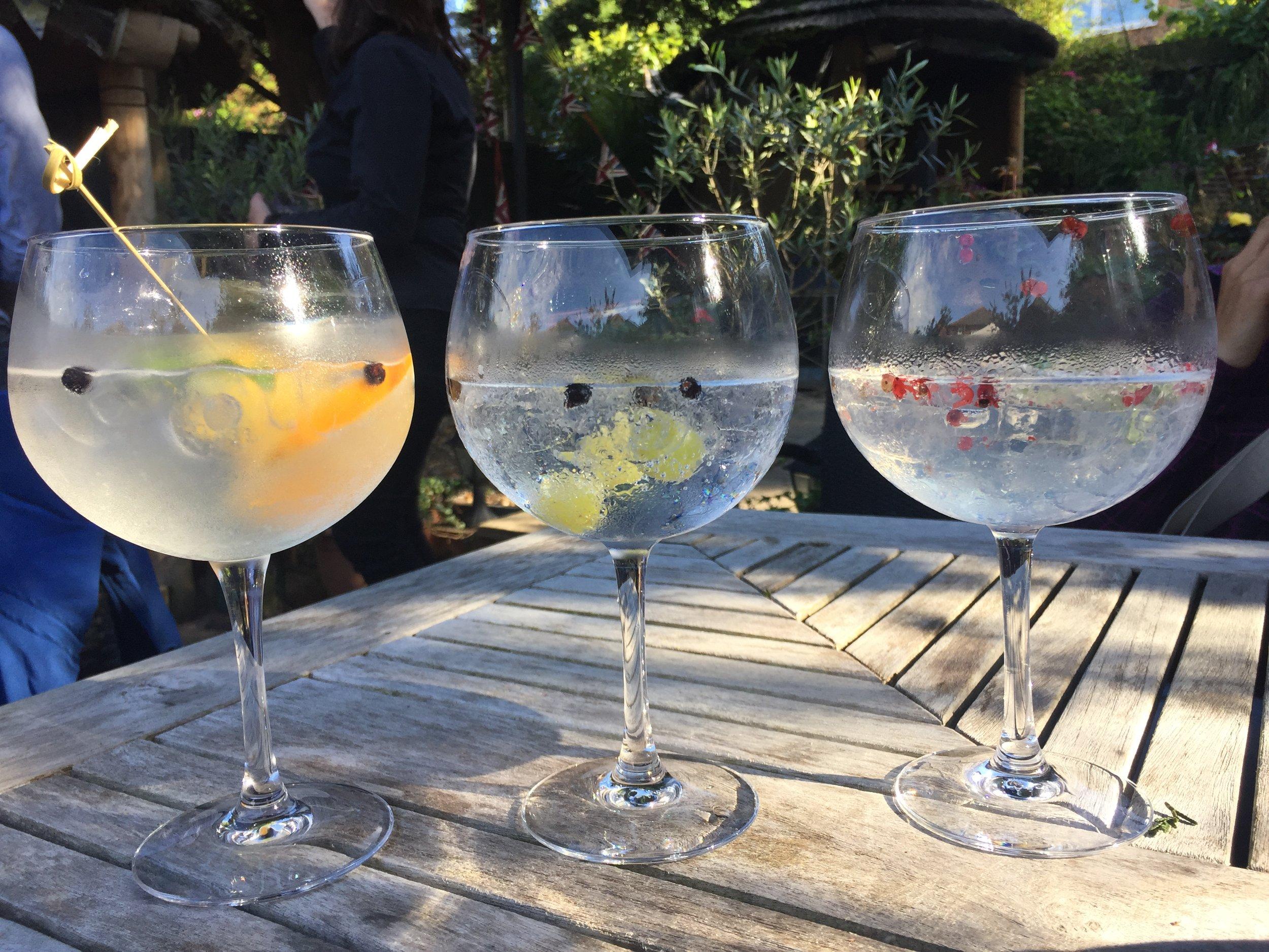 Gins in garden.JPG