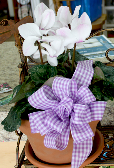 Flowering plant 1