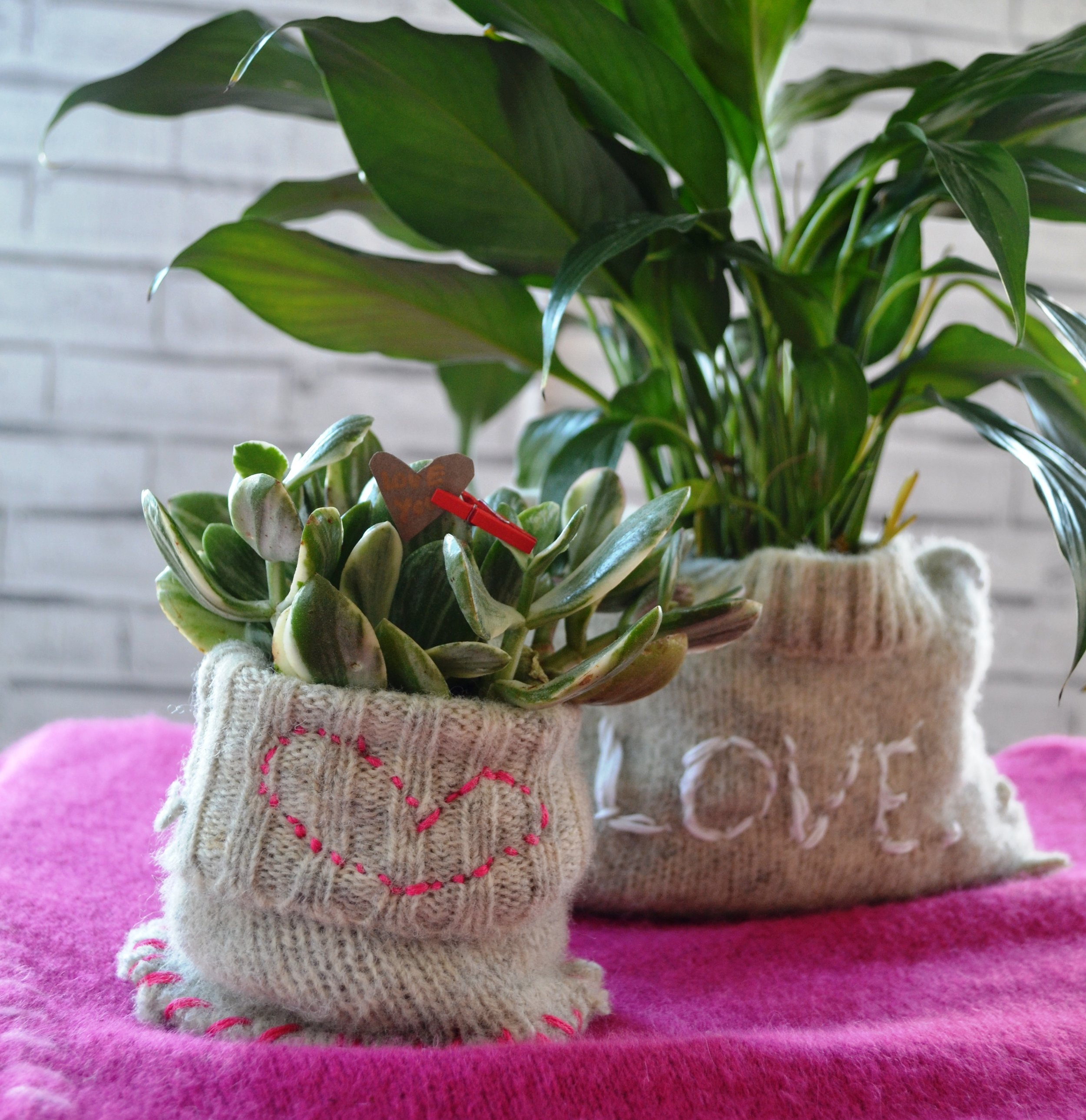 Don't throw away that moth eaten sweater. Create plant cozies… Hand stitch on some hearts or words and these make the perfect Valentine's Day gift.  HOW TO HERE