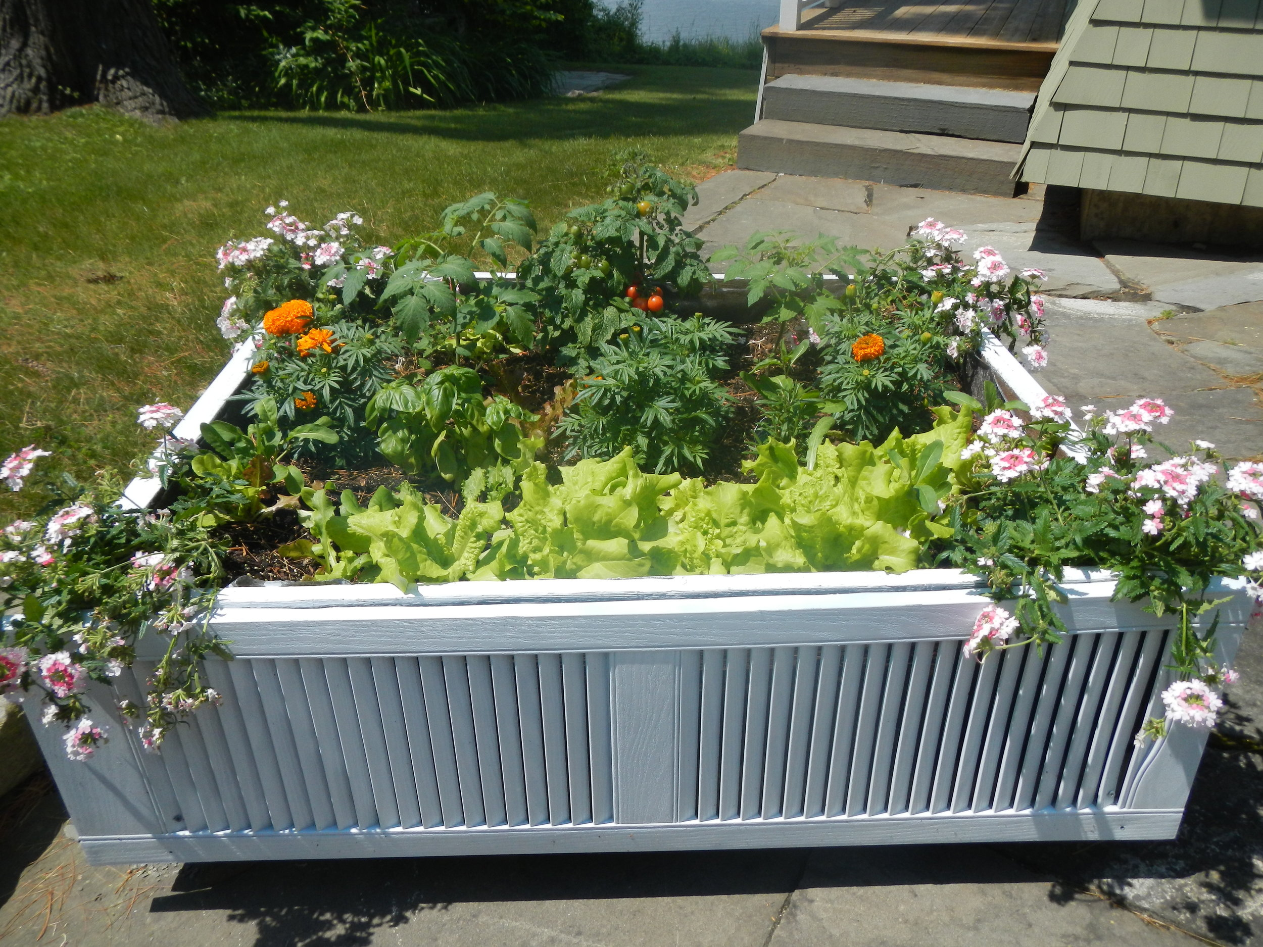 If you want to create a container garden or a raised bed this year…  check out this movable shipping pallet DIY…  Affordable solution to a raised bed — and it is on wheels!