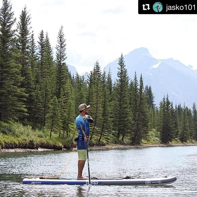 We can see why you would @jasko101 📸 @chadguenter . . #teamægir #yeti @reboundcycle @highcountrysports @valhallapuresquamish @oldtownpaddle . #Repost @jasko101 ・・・ I love this place with all of my heart.  #kcpo #kcpocayman #gobecauseyoucan #standup2mentalillness #standup4mentalhealth  #reboundcycle #sup #supmagazine #canada #supcanada #paddlecanada #beautifulcanada #albertacanada #standuppaddling @aegirsup #ægirsup @drguyharvey @guyharveymagazine #outdoorlife #explorecanada #canada🍁  PC to @chadguenter #hawk #birdsofprey #birds