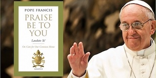 pope-francis-laudato-si-artwork.jpg