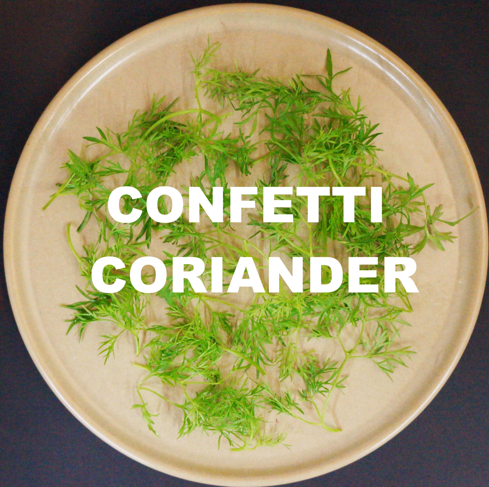 CONFETTI CORIANDER.jpg