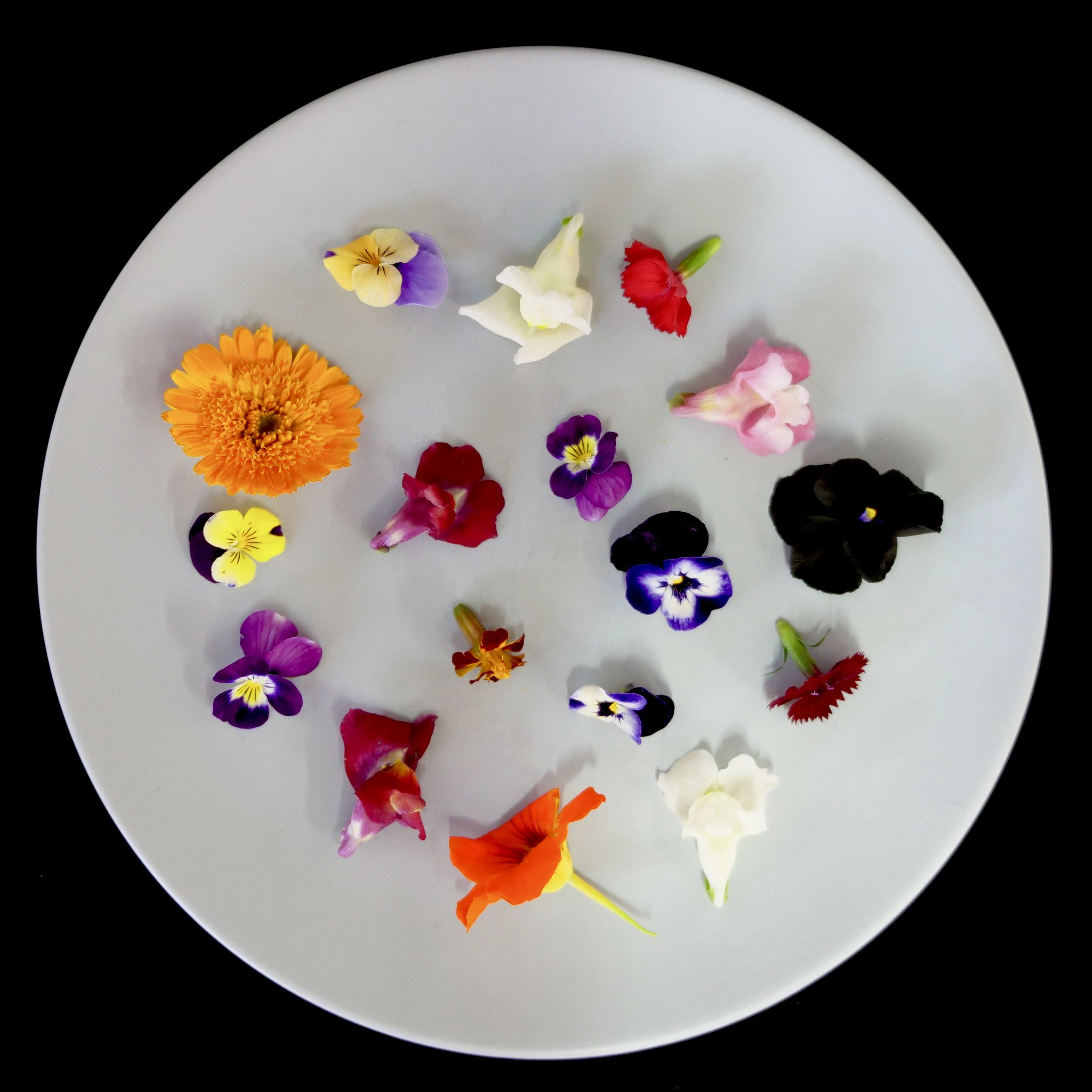 PETITE BOUCHE MIXED FLOWERS
