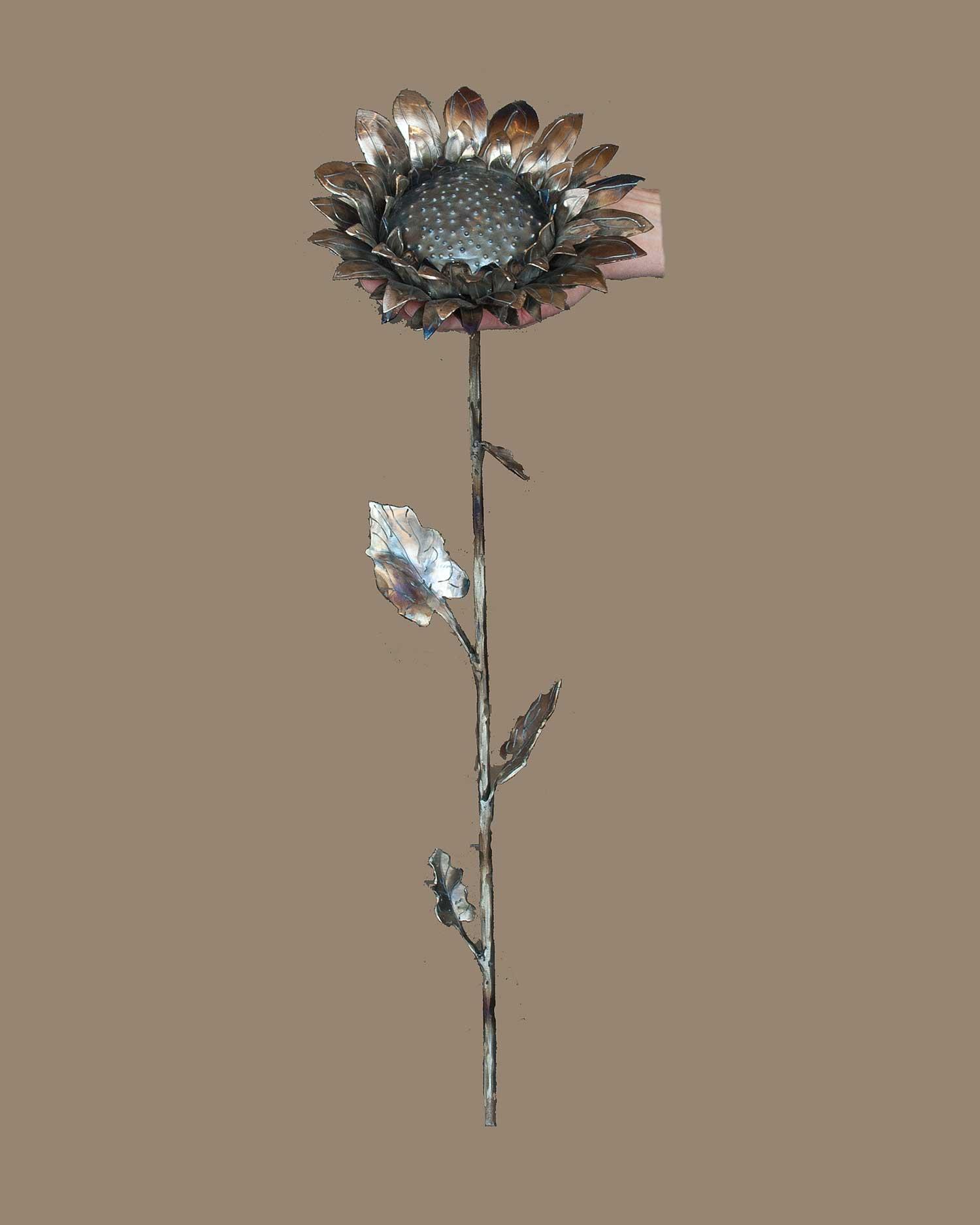 Single Sunflower #1