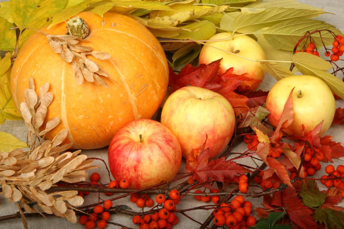 autumn pumpkin and apples.png