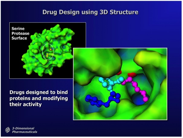 "Figure 1.  ""Structure-Based Drug Design uses the 3D structure of a drug lead bound to a target protein as a direct means to visualize drug-protein interactions and to determine chemical modifications that can improve potency.""   Ray Salemme's Website ."