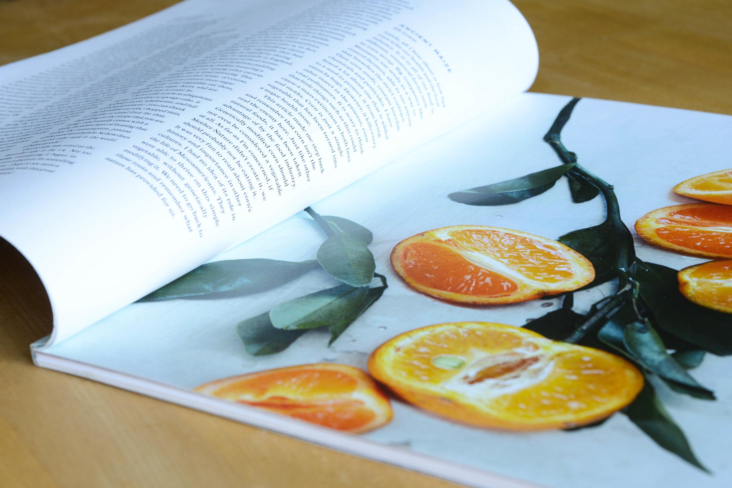 nourish-9.jpg