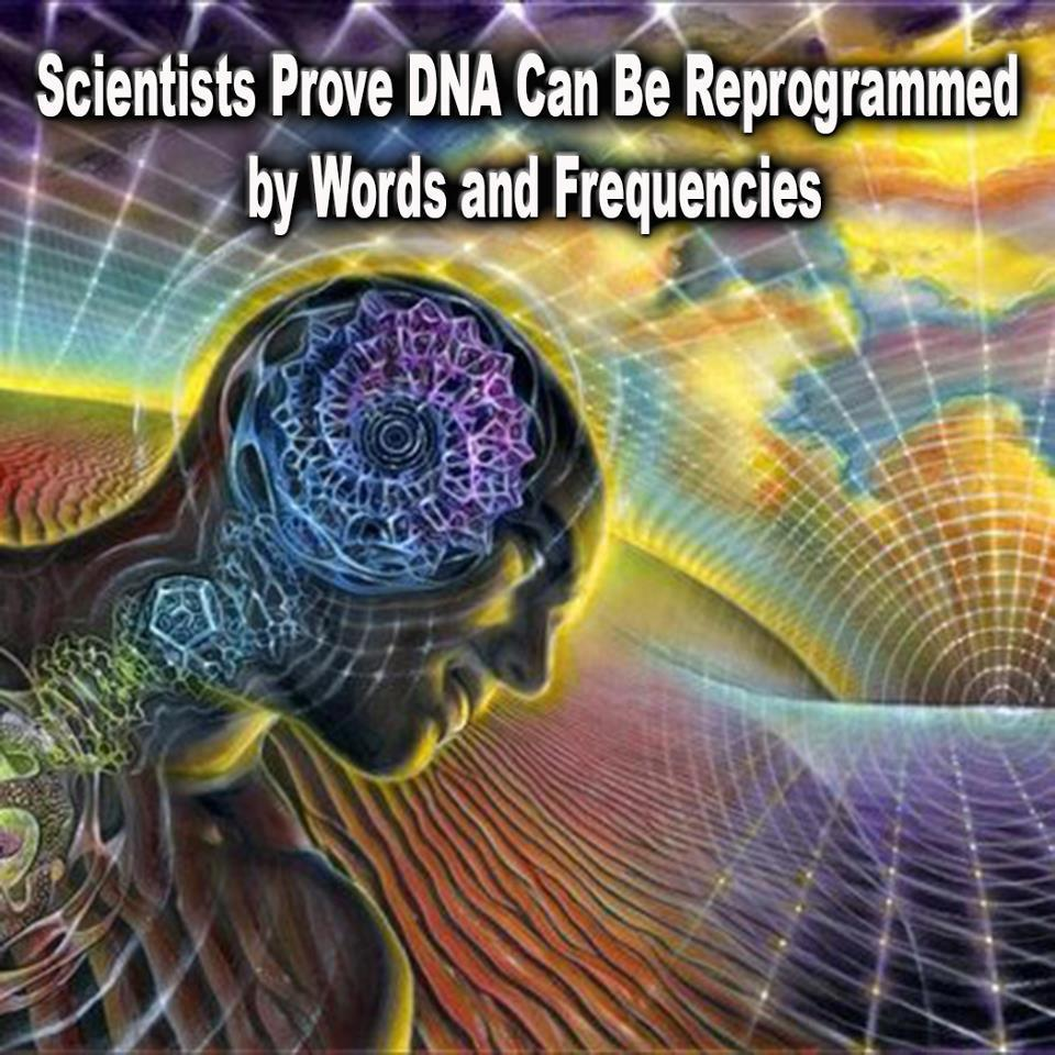 DNA is programed by words and frequencies.jpg