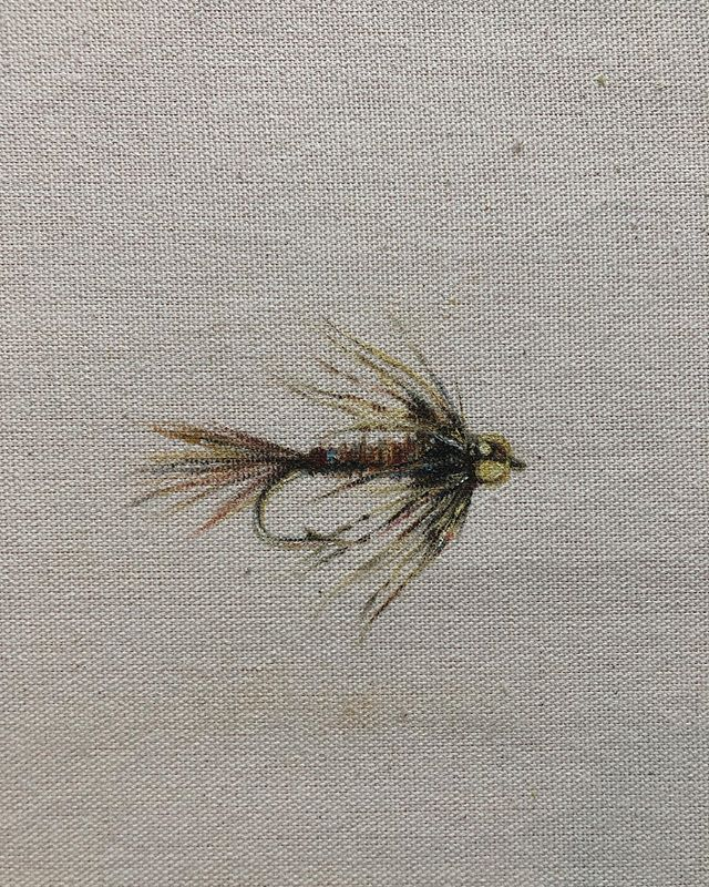 Who can tell me about more about this little nymph? ❉ I'm trying to learn more about fly tying and flys in general. So on days I can't get to one of my big projects I'm going to start experimenting with material/surface and practice some little bugs. ❉ Drop some knowledge. ❉ #flyfishing #flytying #tyingflies #troutflies #freshwaterflyfishing #oilpainting #fishpainting #flyfishingpaintings #fishpainting #fishart #flyfishingart #flyfishingartist #womenwhoflyfish #womenforwildfish