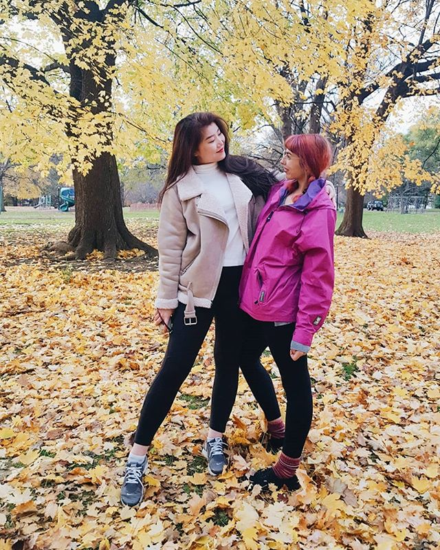 i know it snowed today but just a little more autumn pleaseee 🙏 ...on other note, me & @lil_lentil got our yearbook pictures taken in the park the other day 💕