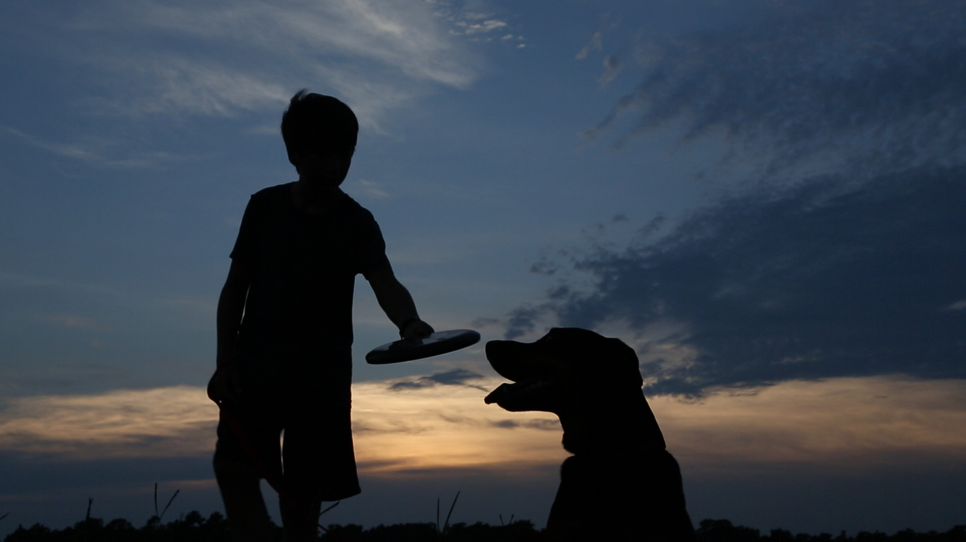 A Dog and His Boy2.jpg