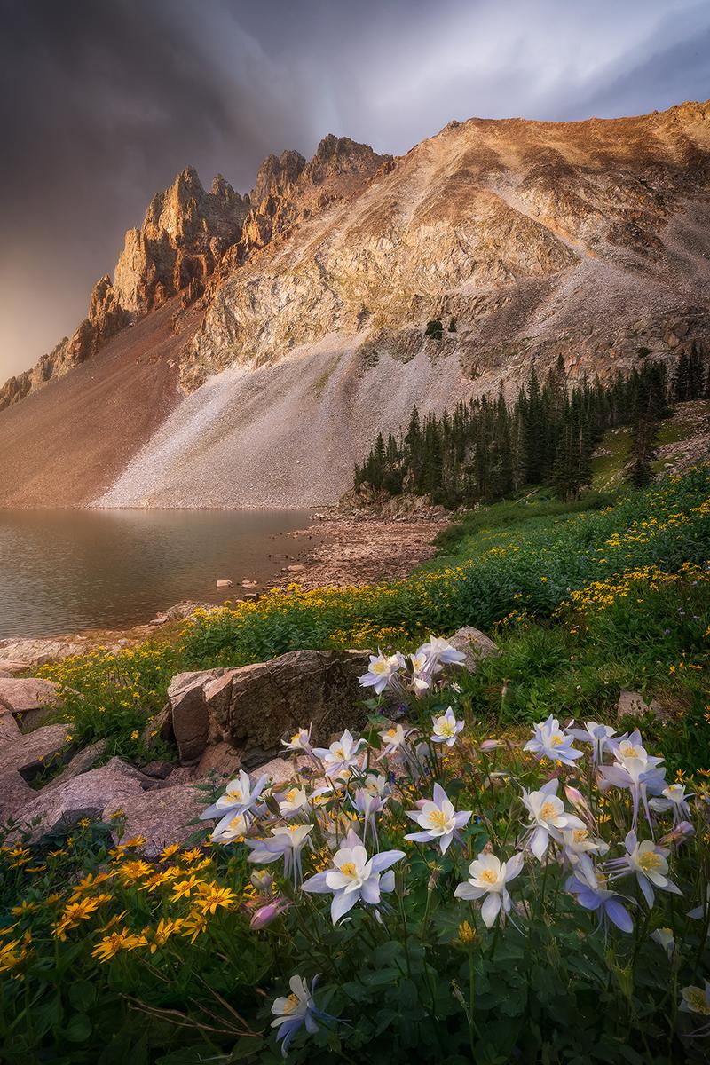 lake-agnes-columbines-landscape