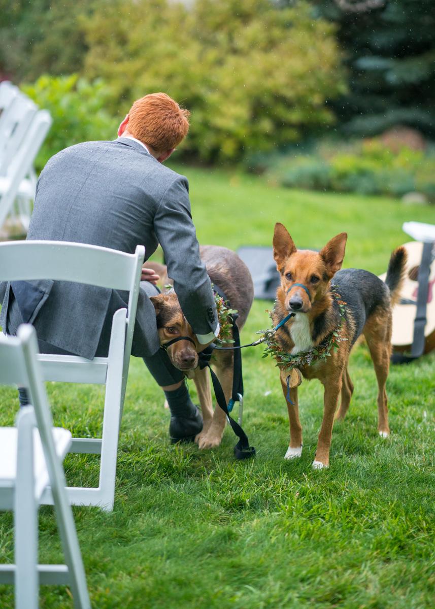 lave_wedding-484_web.jpg