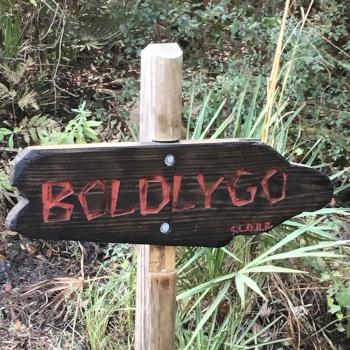 To Boldlygo where no Biglimey has gone before