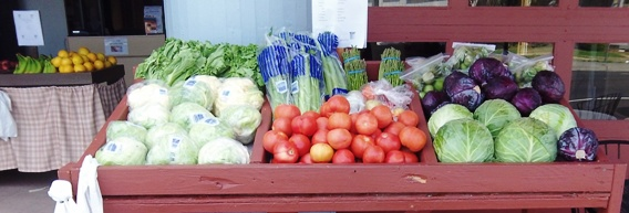Visit us at he Firehouse produce market!