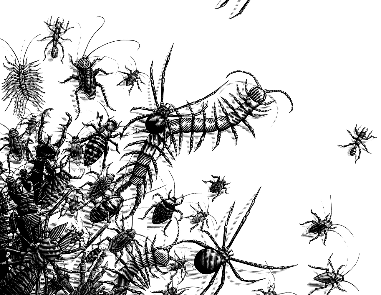 Dark Eden 1,  Fear of Insects
