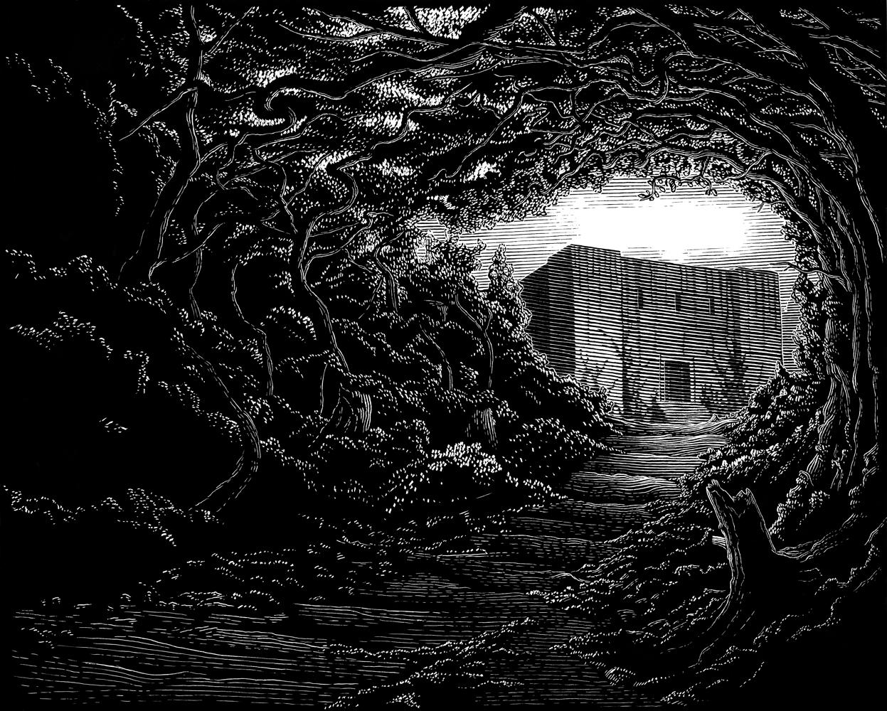 Dark Eden 1, The Arrival