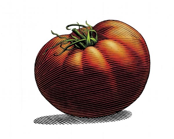 Tomato color1.JPG