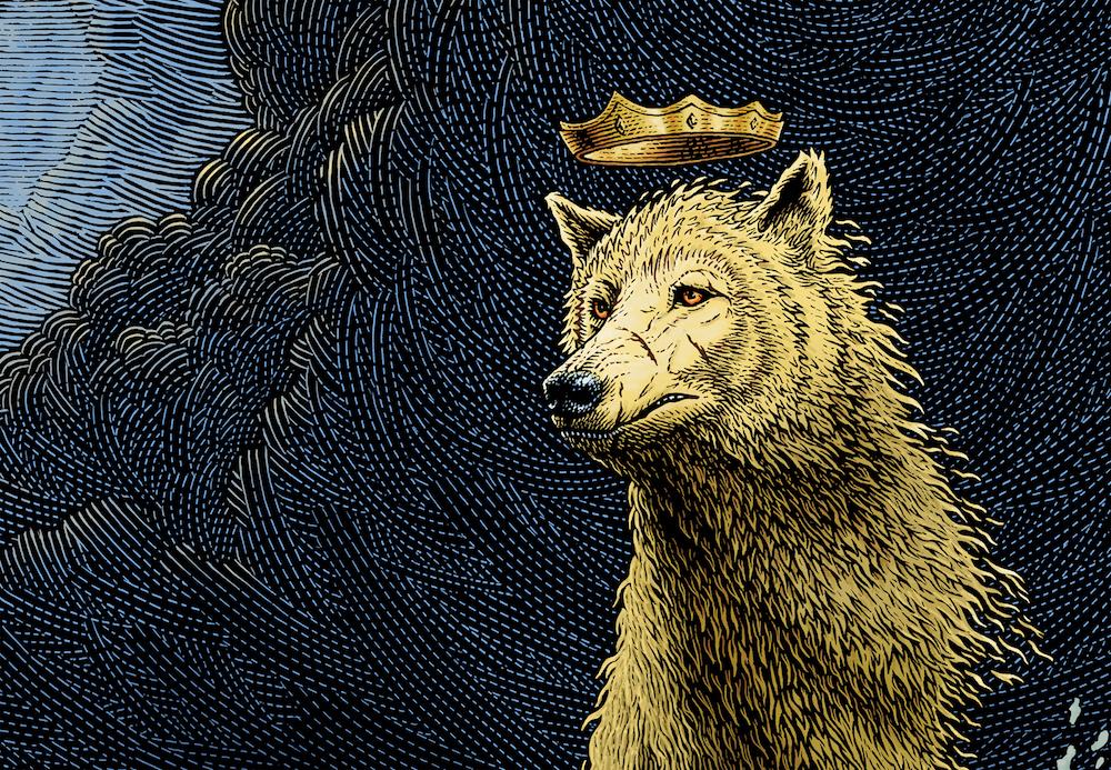 Golden Wolf Color 72RGB Portrait Crop.jpg