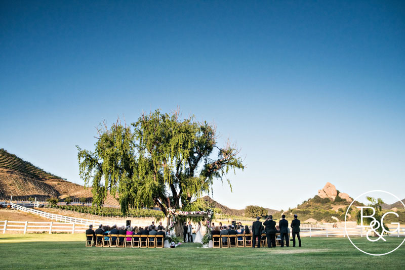 Outdoor ceremony with a view of the vineyards